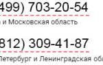 Максимальный срок доверенности по законодательству РФ
