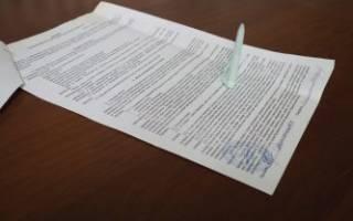 Договор купли продажи щенка образец РКФ