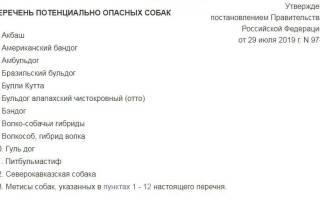 Нарушение правил содержания собак КОАП РФ